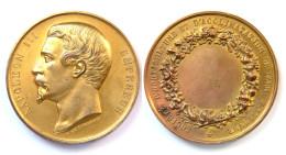 Médaille Société D'Horticulture Et D'Acclimatation De Tarn-et-Garonne. Napoléon III°. Cuivre Doré - Otros