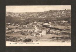 Cassis  -  29- La Gare - Vue Panoramique -  LL  ( Passage Du Train) - Cassis