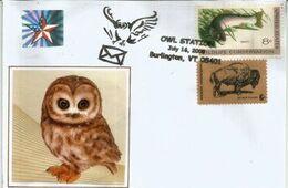 USA. Hibou (Owl Station) Burlington , Vermont., Enveloppe Souvenir - Gufi E Civette