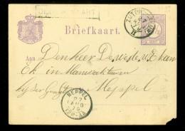 HANDGESCHREVEN BRIEFKAART Uit 1879 Van TREINSTEMPEL ZUTPH:-LEEUW + HALTESTEMPEL DEDEMSVAART Naar MEPPEL  (10.472j) - Postal Stationery