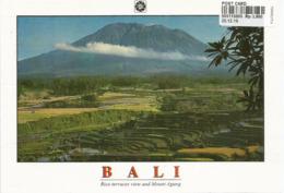 Volcan Mont Agung Et Rizières à BALI, Carte Postale Neuve, Non Circulée - Indonesia