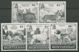 Montserrat 1999 Hunderassen 1100/04 Postfrisch - Montserrat