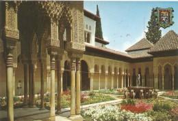 PP103 - POSTAL - GRANADA - ALHAMBRA - PATIO DE LOS LEONES - Granada