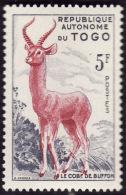TOGO  1957 -  YT 267 - Cobe - République Autonome  - NEUF** - Togo (1960-...)