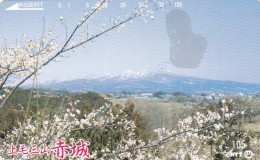 Japan, 250-333 B, Landscape, 2 Scans. - Japan