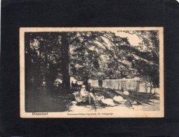 62559     Germania,   Dusseldorf,  Schwanenfutterungsplatz Im  Hofgarten,  NV(scritta) - Duesseldorf