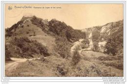 -50% . BOMAL ..--  LOGNE Et Ses Ruines . 1921 Vers DEN HAAG ( Jo HOEBERT ) . Voir Verso . - Durbuy