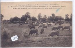 COUTUMES ET COURSES DE TAUREAUX A LA PROVENCALE  N° 1- LA MANADE - France