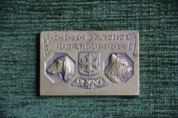 Médaille De La Société Canine Du LANGUEDOC, Chasse, NIMES, 1er Prix Exposition De 1939 - Professionals/Firms
