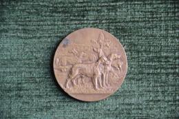Médaille De Société Canine Du LANGUEDOC - Chasse - Exposition De BEZIERS - 1925 - Professionals/Firms