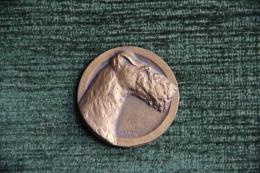 Médaille De Société Canine Du LANGUEDOC - Chasse - PARIS , Spécial TERRIER, 1er PRIX , Graveur : FATH - Professionnels / De Société