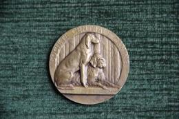 Médaille De Société Centrale Canine Chasse, PARIS, 1er Prix Exposition De 1938, Graveur FATH - Professionnels / De Société