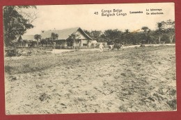 Carte Postale Postkaart 10 C.   N°45 Lusambo Labourage Akkerbouw