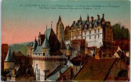37 LOCHES - Le Château Royal. - Loches