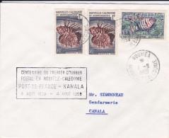 1959 - Nouméa, Nouvelle Calédonie - Centenaire 1er Courrier Postal - Enveloppe Nouméa Canala - 3 Timbres - Neukaledonien