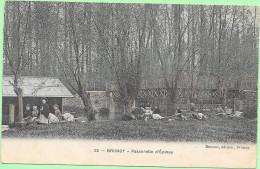 91 BRUNOY - Passerelle D'Epinay - Couleurs - Animée - Nombreuses Laveuses - Brunoy
