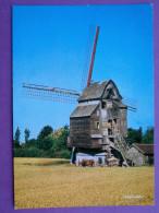 Cpsm Cpm  59 WORMHOUT   Le Moulin               Pas Courant   Attelage, Dechargement - Wormhout