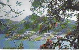 CARAÏBES ANTILLES Caribbean West Indies - THE DOCKYARD As Seen From Clarence House With Flamboyant Trees - CPSM PF - Antigua & Barbuda