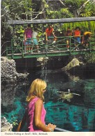 CARAÏBES ANTILLES Caribbean West Indies - BERMUDA ISLANDS - Bermudes - DEVIL'S HOLE Fruitless Fishing - CPSM Dentelée GF - Bermudes