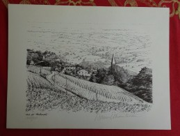 DESSIN DE DANIEL CHANTEREAU LE VIGNOBLE 3 BEAUJOLAIS VAUX DIT CLOCHEMERLE - Prints & Engravings