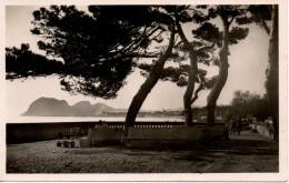 CP - PHOTO - LA CIOTAT - LA CORNICHE - PINEDE DE LA PLAGE - C. A. P. - 34  - T. B. E. - - La Ciotat