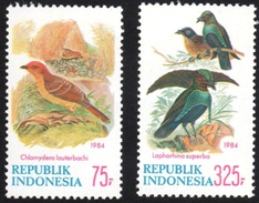 Indonesia Birds Stamps Mnh - Songbirds & Tree Dwellers