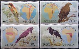 South Africa, Venda, 1983, Mi. 70-73, Y&T 70-73, Sc. 100-03, Birds, Stork, Eagle, MNH - Aquile & Rapaci Diurni