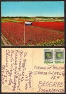 Netherlands BLOEMENLAND Lend Of Flowers  Flag  Stamp     #19251 - Paesi Bassi