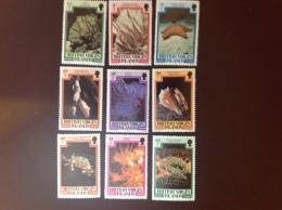 British Virgin Islands 1980 Marine Life Part Set MNH - Iles Vièrges Britanniques