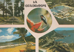 Vues De La Guadeloupe - Guadeloupe