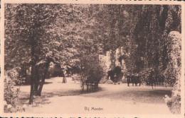 Wijnegem Normaalschool Der Zusters Annonciaden Bij Moeder (tuin Grot) - Wijnegem