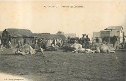 DJIBOUTI MARCHE AUX CHAMEAUX - Gibuti