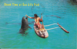 Snack Time At Sea Life Park - Makapuu - Stati Uniti