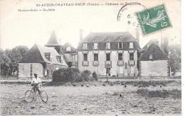 SAINT AUBIN CHATEAU NEUF - Chateau De Fourottes - France