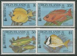 Britische Jungferninseln 1990 Entdeckung Amerikas, Fische 687/90 Postfrisch - British Virgin Islands