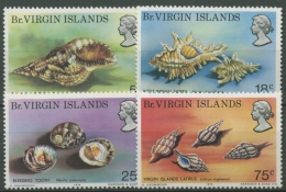 Britische Jungferninseln 1974 Meeresschnecken 274/77 Postfrisch - British Virgin Islands