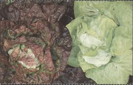 Carte Postale Salade Mélangée - Autres