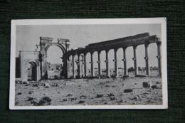 SYRIE - Les Ruines De PALMYRE