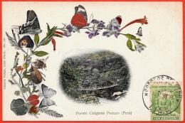CPA PEROU PERU - Puente Colgante Pozuzo ° Eduardo Polack Lima * Papillons Papillon Butterfly Phila - Peru