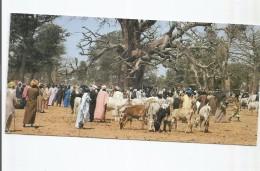 SENEGAL LE MARCHE DU SAMEDI MATIN A TOUBA TOULL ANIMEE VACHE MARCHANDS  CARTE PANORAMIQUE - Sénégal