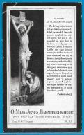 Bidprentje Van Ludovicus De Vos - St Katelijne-Waver - Duffel - 1850 - 1925 - Devotion Images
