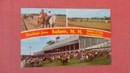 - New Hampshire> Salem Horse Racing      ==  = == Ref  2294 - Salem