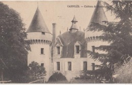Dep 24 - Cazoulés - Château De Fonthaute - Achat Immédiat - Autres Communes