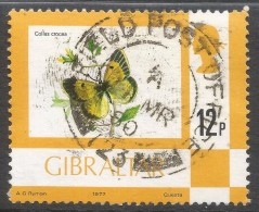 Gibraltar. 1977 Birds, Flowers, Fish And Butterflies. 12p Used. SG 384 - Gibraltar