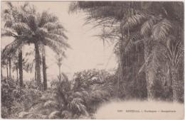 Cpa,le Sénégal En 1900,Rufisque ,sangalcam,afrique De L´ouest,subsaharienne,pré S Mauritanie,malie,guinée ,guinée Bissau - Sénégal
