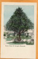 Bermuda St Georges 1905 Postcard - Bermudes