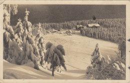 Schutzhäuseram Roten Berg - Winter Im Altvatergebirge - República Checa