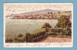 MONTREUX, VUE PARTIELLE Depuis Le Lac // Circulée En 1906 - VD Vaud