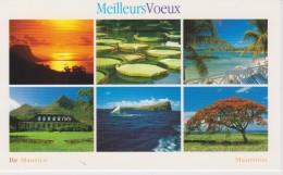 AKMU Mauritius Six Views - Seaside - Victoria Regia - Mauritius