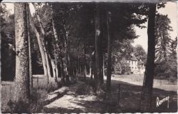 16 / 7 / 385  BRUNOY  ( 91 )  ) ÉCOLE  MÉNAGÈRE  ET  AGRICOLE - INSTITUT  ST. PIERRE  -CPSM - Brunoy